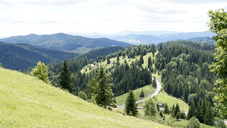 Paisaje de colinas