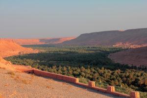 Marruecos. Gran Palmeral