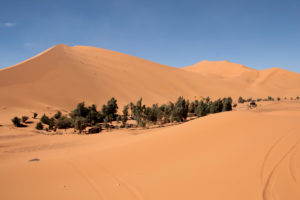 Marruecos. Oasis